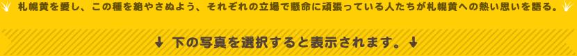 札幌黄を愛し、この種を絶やさぬよう、それぞれの立場で懸命に頑張っている人たちが札幌黄への熱い思いを語る。